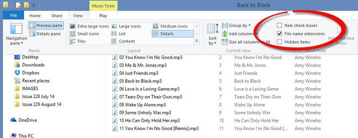 How to change a File Extension in Windows – FlexRadio Systems